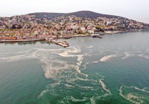 Marmara Denizi'nin neden aşırı şekilde kirlendiği belli oldu